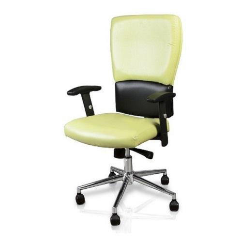 Euro Salon Chair with Chrome Base