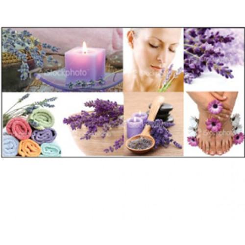 Canvas Wall Mural Sets Lavender Aroma Ensemble