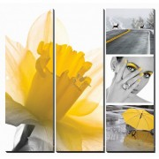 Fresh Daffodil Canvas Murals