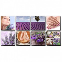 Lavender Fields Canvas Murals