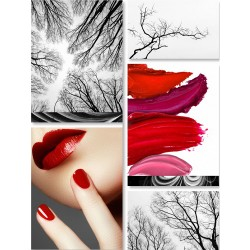 Mystifying Crimson - Glass Murals - 5 Piece ensemble