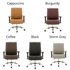 Delia Customer Chairs Full Color
